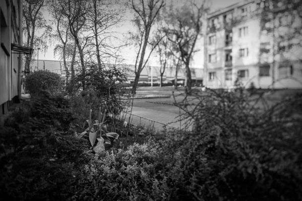 Spacer: Osiedle Toruńska i okolice