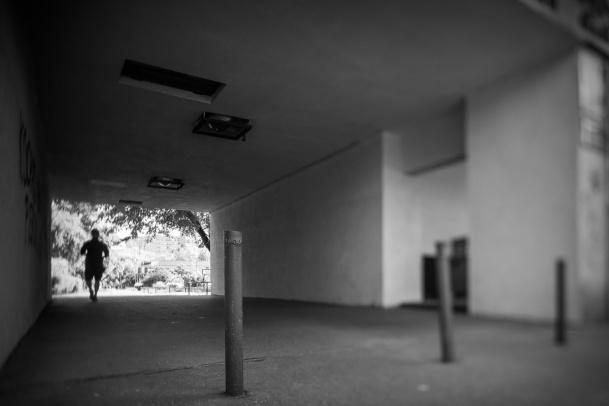 Weneckie Biennale na Bródnie: Długa prosta