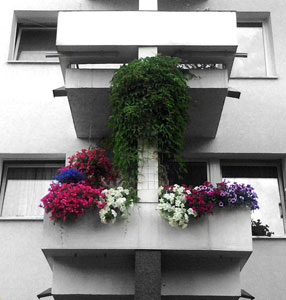 No garden – but there\'s a balcony